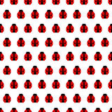 Seamless vector pattern with insects, symmetrical background with bright little ladybugs Stock Image