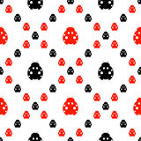 Seamless vector pattern with insects, symmetrical background with bright red and black decorative ladybugs,. On the white backdrop. Series of Animals and Stock Image