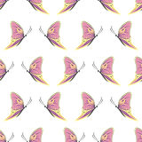 Seamless vector pattern with insects, symmetrical background with colorful butterflies over light backdrop Royalty Free Stock Photo