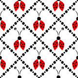 Seamless vector pattern with insects, symmetrical  background with red hand drawn decorative ladybugs on the white backdrop with r Royalty Free Stock Photo