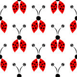 Seamless vector pattern with insects, symmetrical  background with red hand drawn decorative ladybugs on the white backdrop. Series of Insects Seamless Stock Image
