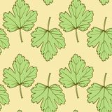 Seamless vector pattern with leaves Stock Image