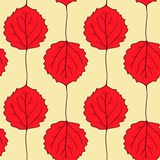 Seamless vector pattern with leaves of aspen Stock Photography