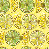 Seamless vector pattern with lemon and lime Royalty Free Stock Image