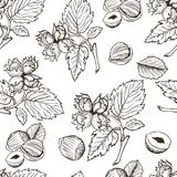 Seamless vector pattern with linear outline hazelnut. Sketches of nuts in vintage style. Seamless vector pattern with hand drawn hazelnut. Branch, leaves and Stock Photo