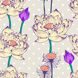 Seamless vector pattern with lotus flower and dots Royalty Free Stock Photography