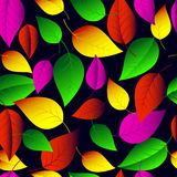 Seamless vector pattern of many-colored  leaves. Royalty Free Stock Image