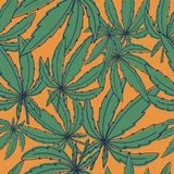 Seamless vector pattern with marijuana leaves on yellow. For textile, craft, wrapping Stock Image