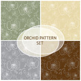 Seamless vector pattern. Orchid background set Royalty Free Stock Image