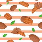 Seamless vector pattern of pecan nut. Striped background with delicious walnut, leaves. Illustration can be used for Stock Image