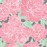 Seamless vector pattern with peonies Royalty Free Stock Photos