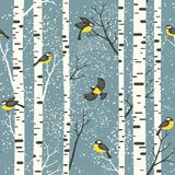 Snowy birch trees and birds on light blue background. vector illustration