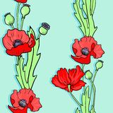 Seamless vector pattern with poppy flowers Royalty Free Stock Image
