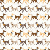 Seamless Vector Pattern with Pretty Walking Italian Greyhounds Stock Image