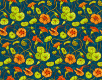 Seamless vector pattern with red and yellow nasturtium flowers and leaves on dark blue background Stock Images