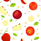 Seamless vector pattern of ripe fruit. Delicious juicy red apples, whole, slice, half, , leaves on white background Stock Photography