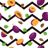 Seamless vector pattern of ripe plums fruit. Royalty Free Stock Photo
