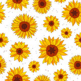 Seamless vector pattern of sunflowers Stock Photography