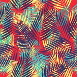 Seamless vector pattern of tropical leaves of palm tree. Seamless pattern of leaves monstera, tropical leaves of palm tree. Vector background Royalty Free Stock Photo