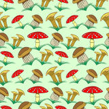 Seamless vector pattern with vegetables, background with closeup mushrooms and grass: fly agaric, chanterelle and porcini mushroom Stock Photography