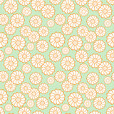 A seamless vector pattern, with white daisies on green background. Stock Photography