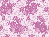 Seamless Vector Pink Lace Royalty Free Stock Photos