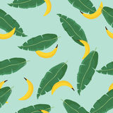 Seamless vector summer pattern with Tropical Palm Leaves and bananas.Vector. Exotic Texture. Floral Wallpaper. Seamless vector summer pattern with Tropical Palm Stock Image