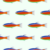 Seamless vector symmetrical pattern with colorful closeup fishes on the light background Royalty Free Stock Photos