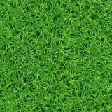 Seamless vector texture of fresh green grass on lawn Stock Photography