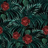 Seamless vector tropical pattern with green palm leaves and dark hibiscus flowers. Tropical background with jungle plants. Seamless vector tropical pattern with Royalty Free Illustration
