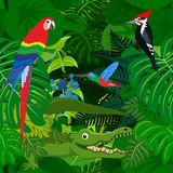 Seamless vector tropical rainforest Jungle background with kids animals Stock Photos