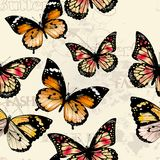 Seamless vector wallpaper pattern  with butterflies Stock Photos