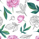 Seamless vector watercolor and graphic sketch peony pattern. Royalty Free Stock Images