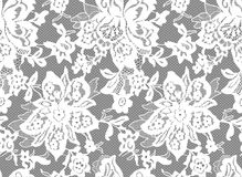 Seamless Vector White Lace Royalty Free Stock Images