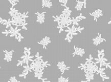 Seamless Vector White Lace Stock Photo
