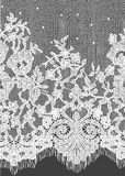 Seamless Vector White Lace Pattern Royalty Free Stock Photos