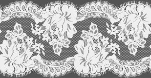 Seamless Vector White Lace Stock Photography