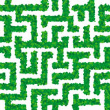 Seamless vegetal maze Stock Photography