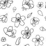 seamless vektor f?r bakgrund Körsbärsröda blommakronblad Svart ?versikt p? genomskinlig bakgrund vektor illustrationer