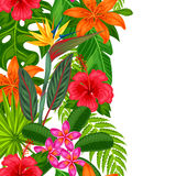 Seamless vertical border with tropical plants, leaves and flowers.  Royalty Free Stock Photos