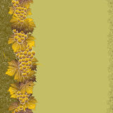 Seamless vertical grape pattern Stock Images