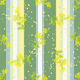 Seamless vertical pattern with flowers Mimosa Stock Photography