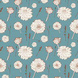 Seamless vintage blue floral pattern with white aster Royalty Free Stock Image