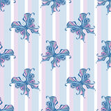 Seamless vintage butterfly pattern stripe background Royalty Free Stock Images