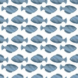Seamless vintage fish drawings pattern, vector illustration. Engraving style sea life background. Retro element for your. Seamless fish drawings pattern, vector Royalty Free Stock Photo