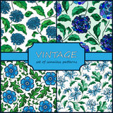 Seamless Vintage Floral Background Collection. Vector background Royalty Free Stock Photos
