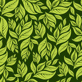 Seamless vintage floral pattern with leafs Stock Images