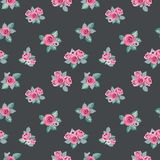 Roses pattern Stock Image
