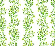 Seamless vintage ornamental pattern with green curls and leaves. Watercolor. Seamless vintage ornamental pattern - retro design with green curls and leaves Royalty Free Stock Images