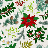 Seamless vintage pattern. Christmas Botanical background. Colorful. Stock Images